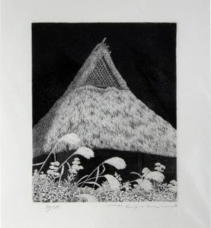 Japanese_Pampas_Grass_Etching_Edition52of100