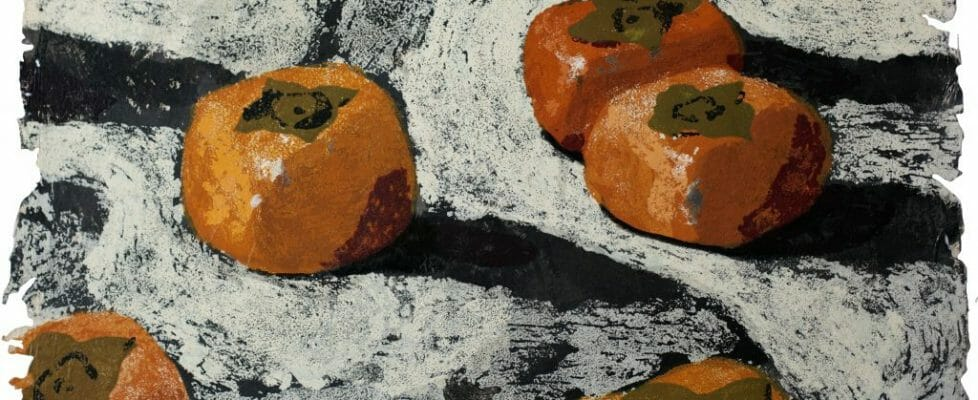 Persimmons_1991_ed20_120x148
