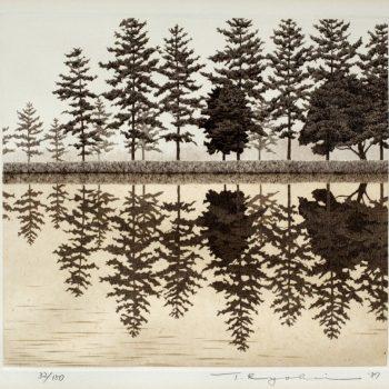 Reflection_1987_ed150