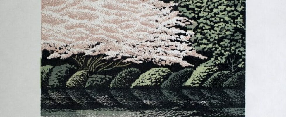 SakuraReflection_ed60_2004_45x30