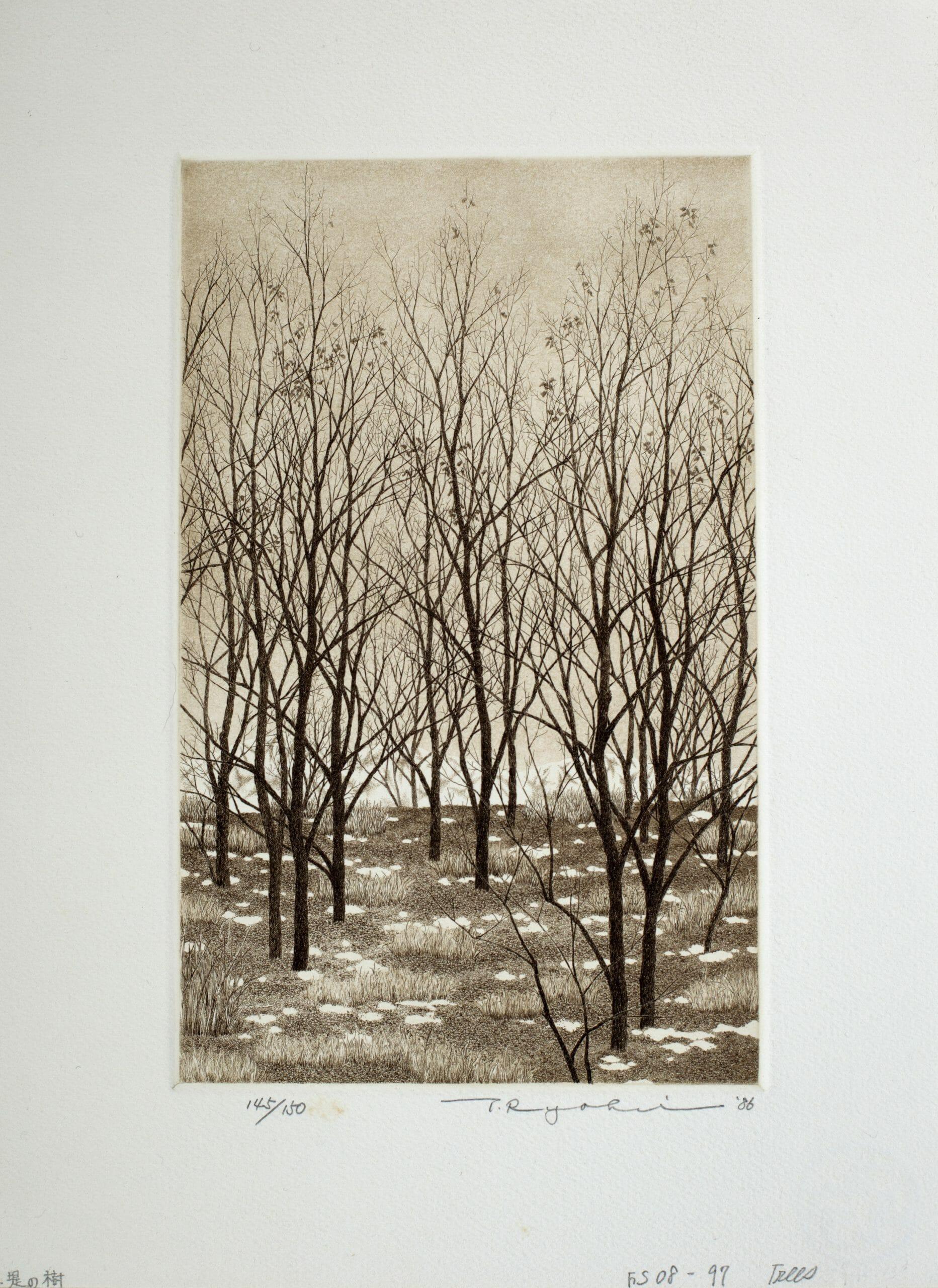 Trees_1986_ed150
