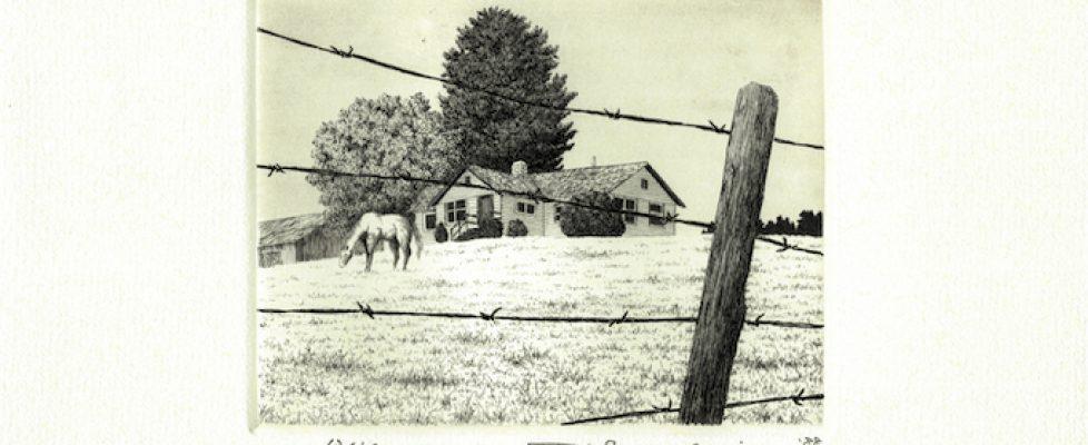 Grazing Horse10cmx13cm, 1988, 63 of 150