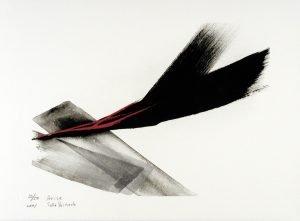 Arise-ed50-28x38cm