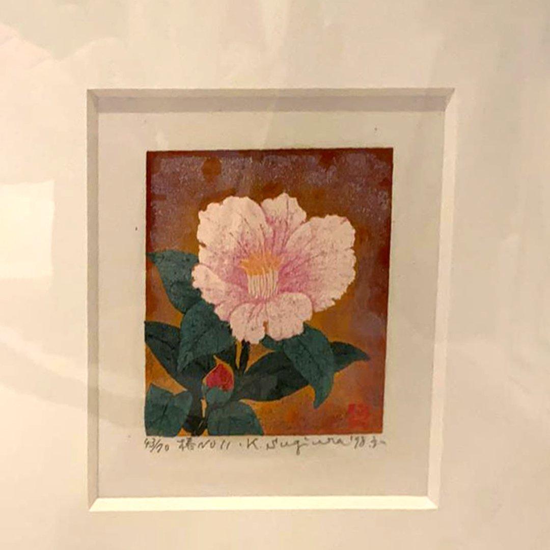 Camellia No. 11