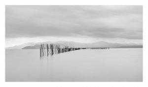 Sticks of Stillness